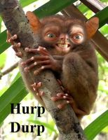Hurp Durp 2 by Soboth