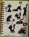 Black cats by Jazzekat