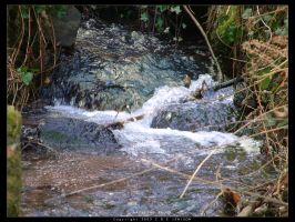 Babbling Brook by unclejuice