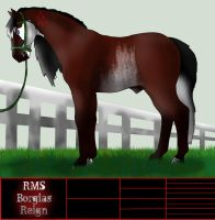 RMS Borgia's Reign by PrimalInstincts