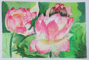 blossoming lotus by Lidia-v-Essen