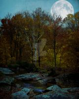 Fall Premade Background FGM by FairieGoodMother