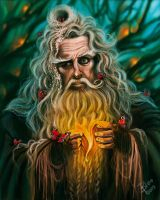 Radagast by Blookarot
