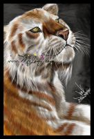 +Tabby Tiger+ by mejony