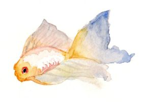 Watercolor Fish by Caitiekabob