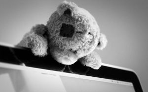 Wallpaper black bear by MaguiEditionsLove
