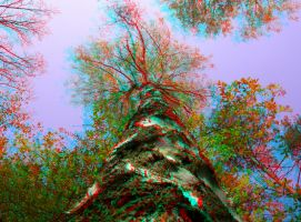 Growing 3D Anaglyph by yellowishhaze
