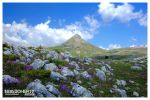 Monte Camica by PicTd