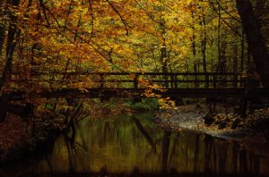 Indian summer bridge by sahk99