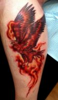 fire bird by seanspoison