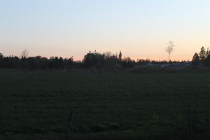 Sunset, PEI countryside by tdogg115