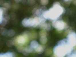 Natural Bokeh - Stock by Desperation-Stock