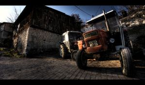 The Mule by PortraitOfaLife