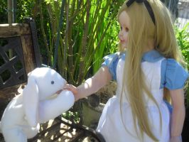 Alice In Wonderland by Little-Psycho-Lilith