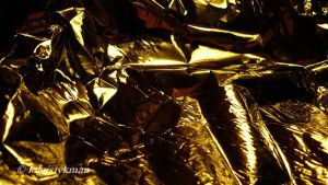 golden toadr_57 by alizee13