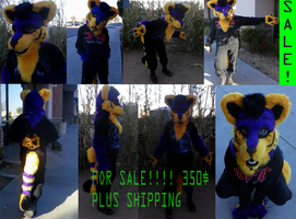 PARTIAL FOR SALE!!! PURPLE YELLOW CANINE SOLD by TomorrowsBadSeeds