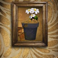 Caught In A Picture Frame by chamirra