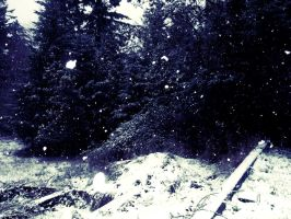 Falling Snow. by to-eternity