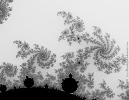 4300 Mandelbrot trees SP by AndreiPavel