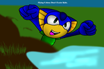 SonicFanClub123 Contest Entry - Flying Cobras... by BloodCoveredTears