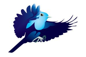 Twitter Bird by WinfrithGraphics
