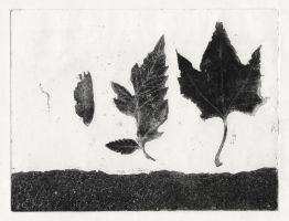 Leaves - Soft-ground Etching by SilentIvo
