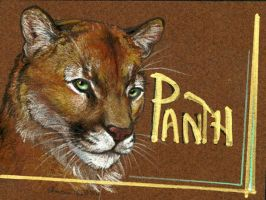Conbadge: Panth by vantid