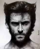 Wolverine X men by benmboard