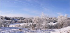 Snow Valley Panorama by bacardi870