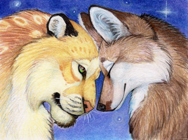 Tender Evening by Yote