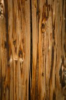 Multi-Colored Wood Stock 2 by toshema