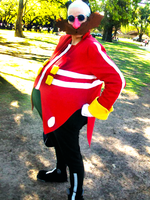 Dr Eggman cosplay in a Picnic 1 by ViluVector