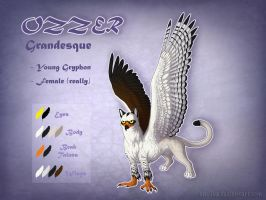Ozzer - Character Sheet by Anellyz