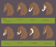 Lion Harte Face Markings by Whitelupine