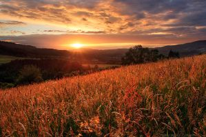 Last minute of Sun by FlorentCourty