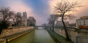 Notre dame with fog by binarymind