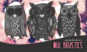 Owl Brushes/PS by Peerfectboyfriend