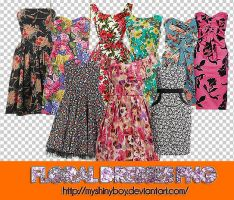Floral Dresses PNG by MyShinyBoy