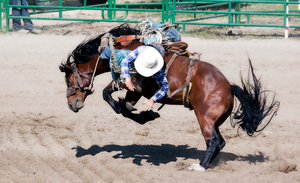 Rodeo5-2014 by Lonewolf-Eyes