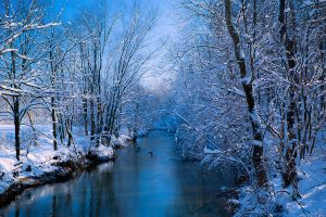 Simpson Creek Winter by LAlight