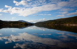 Reflection of Nature by Pinho