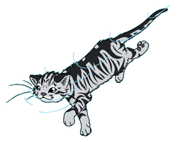 RiverClan - Silverstream by WildpathOfShadowClan