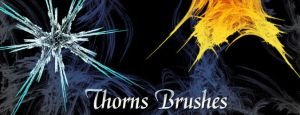 Thorns Brushes by analeewon