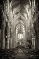 Soisson Cathedral by noelholland