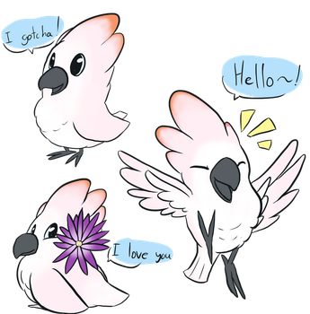 Gotcha the cockatoo by Luckynight48
