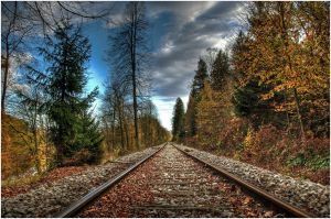 The train to Winter by d1kobraz