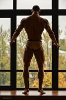 Bittersweet Memories by vishstudio