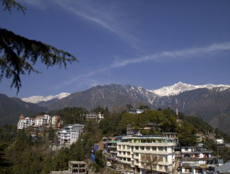 The magnificent Dhauladhar: view from the Temple by spacejunior