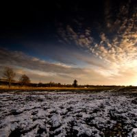 Snow Field by Dave-Ellis
