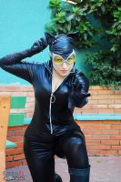 my new 52'catwoman by noooooname